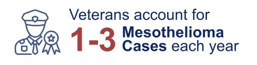 """A graphic of a veteran with text that reads: """"Veterans account for 1-3 mesothelioma cases each year""""."""